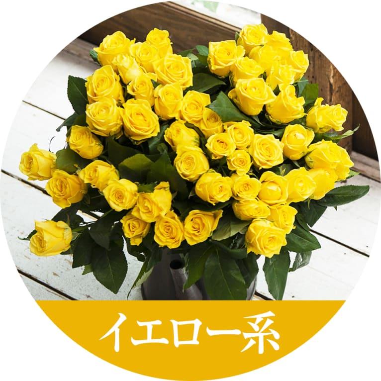 イエローのバラの花言葉は、「友情」、「献身」、「感銘」など、何よりも元気の出るカラーが人気です。見ているだけで楽しい気分にさせてくれ、仲間意識が高まるい色です。ご家族や友人におすすめの色です。