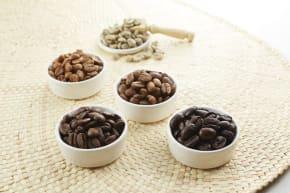 【コーヒーコラム Vol.16】コーヒーの品種って何?