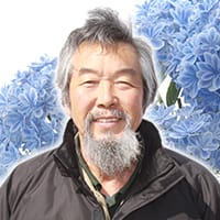 <プロフィール>アジサイ研究会・会長 日野 円蔵さん