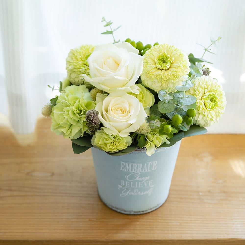 【冬生まれの方におすすめ】Kakeru(和田翔氏)オリジナル 白バラとガーベラのアレンジメント「ホワイトクリスマス」<br>5,500円(税込)
