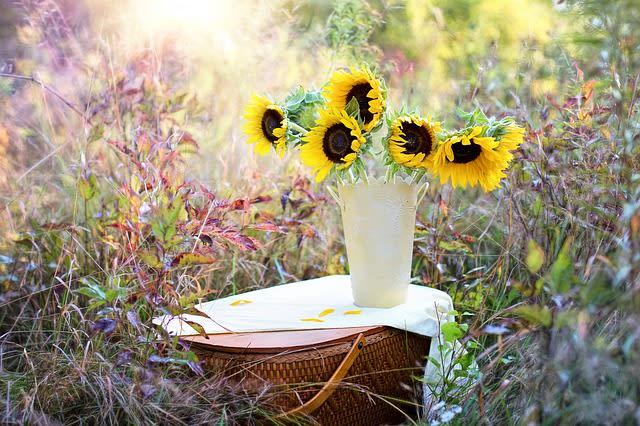 花瓶に生けたひまわり