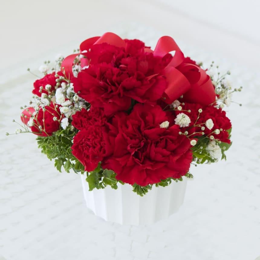 赤いカーネーションの花言葉<br>「母への愛」