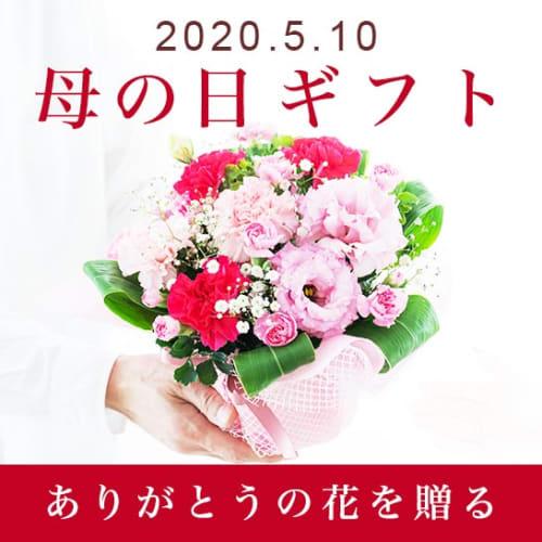 母の日お花ギフト・プレゼント