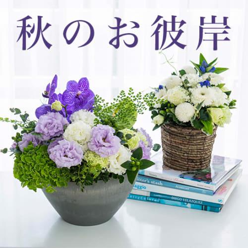 秋のお彼岸・お悔やみ・お供えに贈る花