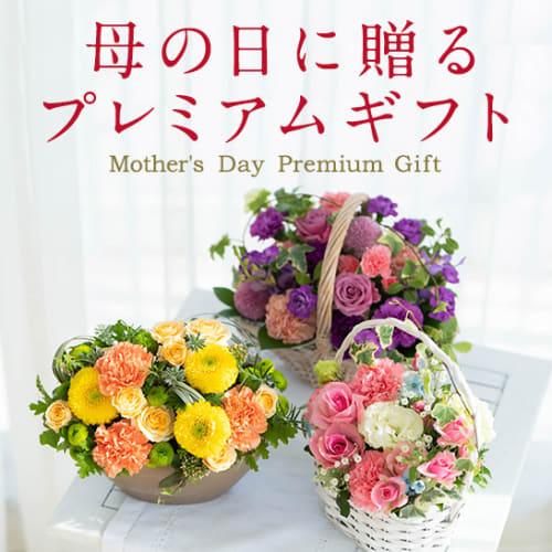 母の日に贈りたいおしゃれなお花のギフト