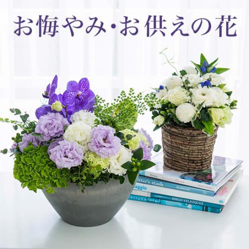 お悔やみ・お供えに贈る花