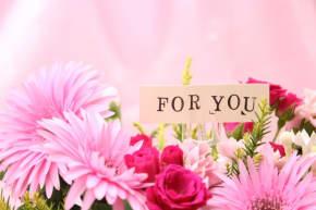 誕生日プレゼントに希望の象徴・ガーベラを贈りましょう!
