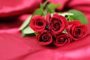 お供えのお花にバラを選んではいけない?その理由は?