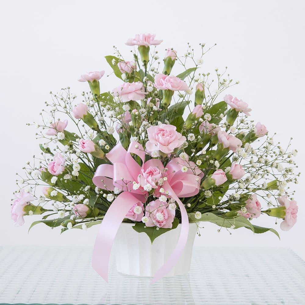 【母の日花ギフト】カーネーション トゥインクル(ピンク)<br>3,850円(税込)