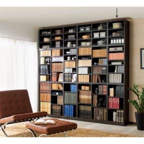 1cmピッチ薄型壁面書棚 奥行28cm 幅42cm 上置き高さ55cm オープン