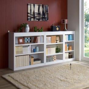 頑丈棚板がっちり書棚(頑丈本棚) ロータイプ 幅40cm