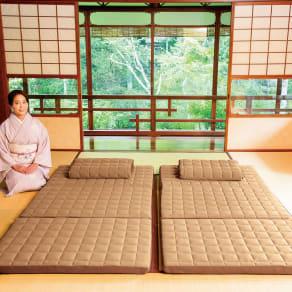 セミダブル(名旅館「岩惣」 おもてなしの寝心地シリーズ 敷布団)