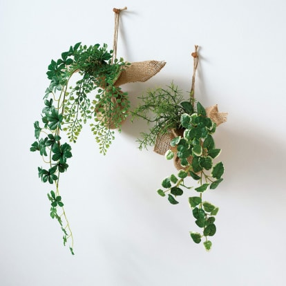 ピンで飾れる消臭グリーン 2種セット