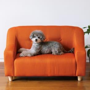 ペットのソファ 大