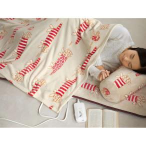 リサ・ラーソン 電気毛布シリーズ 電磁波カットごろ寝3点セット