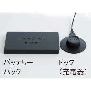 BALMUDA/バルミューダ 「ザ・グリーンファン」 専用バッテリー&ドック