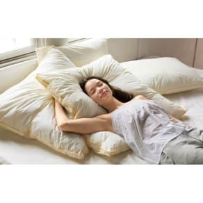 フィベールピロープレミアム 枕のみ ハーフボディ(お得な2個セット)