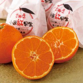 香川産 越冬樹上完熟「さぬき紅」 (約3kg)