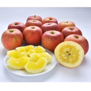 山形県朝日町産 dのりんご 2kg