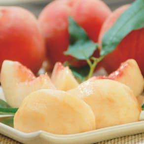 山形産 白桃「おどろき」 (5kg)