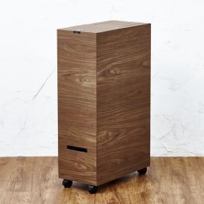 木目調ダストボックス 容量45L(引き出し付きタイプ)