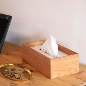 BRUNテッシュボックス