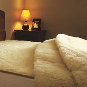 セミダブル(ザプレミアムソフゥール敷き毛布)