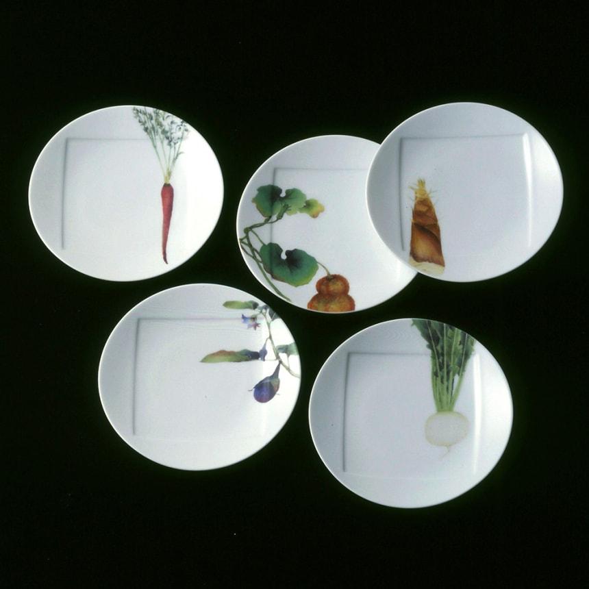 京香旬彩 15.5cmプレート(お皿)5枚セット(絵変り) [ノリタケ/Noritake 洋食器]