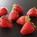和歌山産 イチゴ「まりひめ」 約360g(15玉)