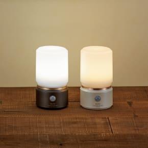 人感・LEDセンサーライト