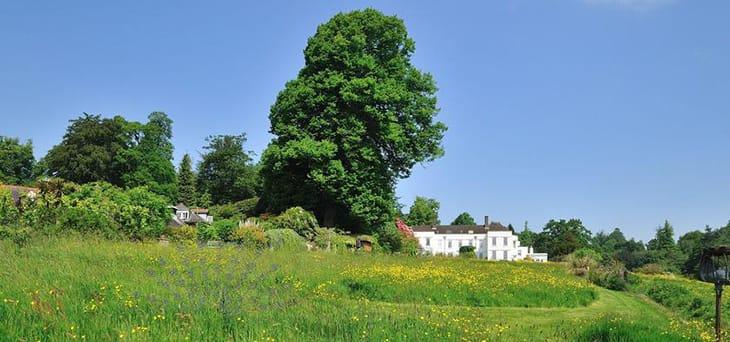 イギリスで訪ねた庭レポート vol.7 ナショナル・ガーデン・スキームに参加の個人庭編