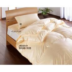 【お得なセット】ウォッシュニング・ハウス 洗える2枚合わせベッド用セット
