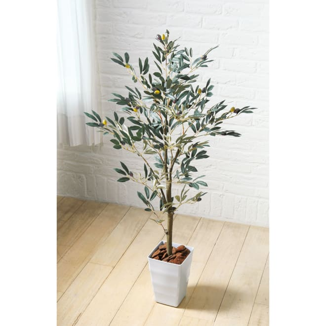 CT触媒インテリアグリーン オリーブ 植え付け面の装飾用バーク(天然木の皮)付き。
