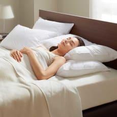 普通判 (フォスフレイクス 安眠枕 お得な2個セット(枕のみ))
