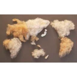 【毛布の老舗 三井毛織】エジプト超長綿やわらか綿毛布 掛け毛布 より暖かく、より心地よい原料を求め、世界各国の産地へ出向くこともあります。