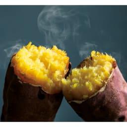 vitacraft/ビタクラフト コロラド4点セット 片手鍋+両手鍋(浅型)+両手鍋(深型)+パンチングザル 直火でオーブン調理も。焼きいもからケーキ、ローストビーフまで手軽に作れます。