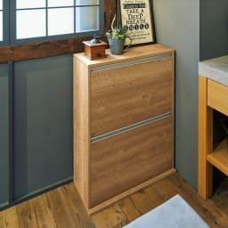ゆっくり閉まる家具調ダストボックス 2分別 幅39.5cm 色見本(イ)ブラウン 家具のような佇まいで、インテリアに自然になじみます。 ※写真は4分別 幅71cmタイプです。
