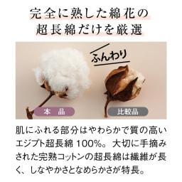 【毛布の老舗 三井毛織】超長綿×ウール プレミアム毛布 敷き毛布 【超長綿とは】繊維長35mm以上の超長綿は丈夫でなめらか。綿花全体の3%以下しか収穫できない貴重素材です。