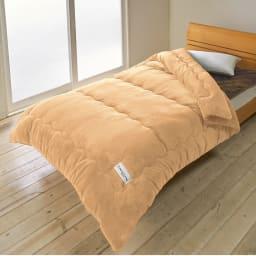 【ディノス限定販売】ヒートループ(R)DX ぬくぬく増量掛け布団 (イ)ライトブラウン ふわふわの厚みと、肌ざわりの良いマイクロファイバー生地で、見た目にも高級感あり。ベッド使いでもおさまりの良いキルト位置です。