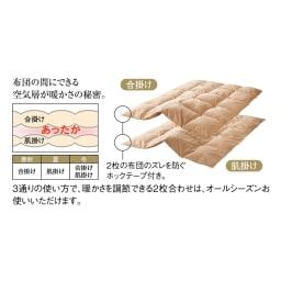 4ツ星エクセルゴールドラベル×超長綿 2枚合わせ羽毛掛け布団 (イ)ブラウン 2枚合わせ羽毛布団