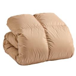 2段ベッド用 (ウォッシュニング・ハウス(R) 洗える羽毛掛け布団) (ウ)ライトブラウン