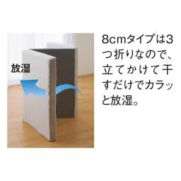 【アキレス×dinos】2層式縦ゾーンマットレス 8cmタイプ