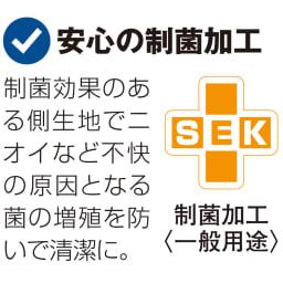 防汚・防塵・防ダニ アンチストレス(R)ベッドシーツ ファミリーサイズ(約幅200・220・240cm)