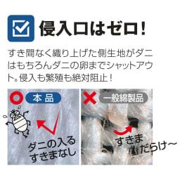 サテン織で質感UP!綿100%のダニゼロック枕カバー 普通判(同色2枚組) 特殊な高密度生地織りでダニの卵までシャットアウト!