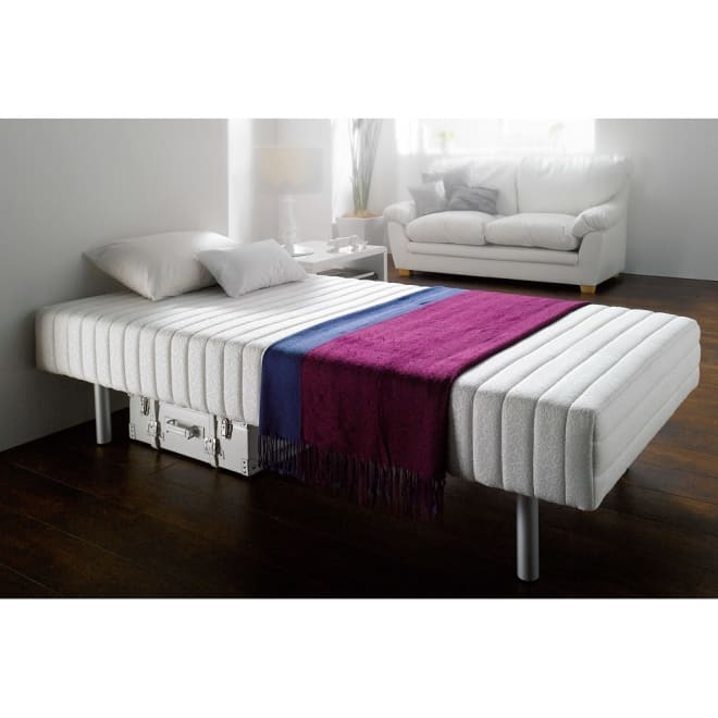 France Bed/フランスベッド 軽くて丈夫な脚付きマットレスベッド フランスベッドがつくる脚付きベッド。寝心地にもしっかりこだわる方におすすめ。 ※写真はハイタイプ・脚高25高さ47.5cmです。