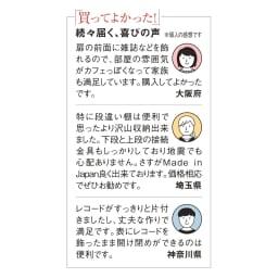 奥行39cm マガジン&レコードキャビネット ベース CDプラス扉タイプ3段3列[高さ85・幅113cm]