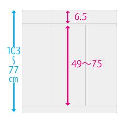奥行35cm 5枚扉・幅144.5cm 扉タイプ 高さサイズオーダー収納庫 内寸サイズ