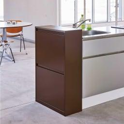 カラフルなペールでわかりやすく分別できる スチール製ダストボックス 幅60cm 高さ95cm (イ)ブラウン シンプルなデザインでモダンなキッチンにもぴったり。