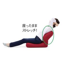 日本製洗えるカバー付き背中を支えるコンパクト美姿勢座椅子