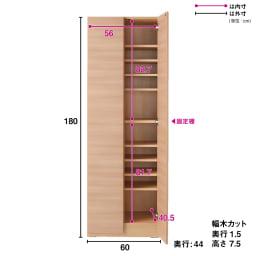 奥行44cm 生活感を隠すリビング壁面収納シリーズ 収納庫 扉タイプ 幅60cm